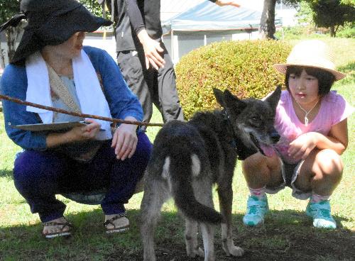 譲渡会で選んだ犬をなでる高根里実さんと母幸恵さん=熊本市東区
