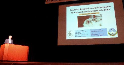 動物実験の代替法についてアジアや欧州の研究者が活発に意見を交わした=15日、佐賀県唐津市