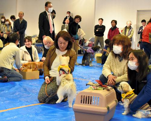 災害に備えた犬のしつけ方法を学ぶ参加者ら=和歌山市