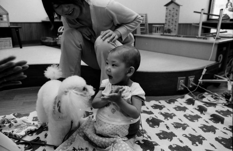 犬が自分の手からおやつを食べてくれて、「やったー」(2008年撮影)(c)大塚敦子