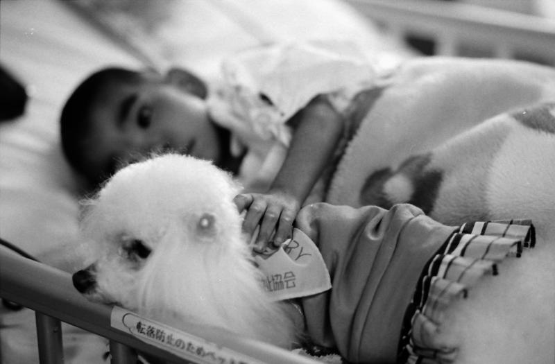 どんなに具合が悪いときでも、犬に会うのを楽しみにしていた女の子(2008年撮影)(c)大塚敦子