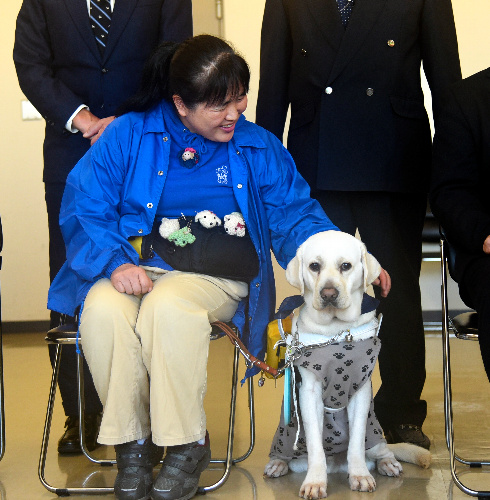 鶴野克子さんに、3頭目の盲導犬「ディア」が貸与された=徳島県庁