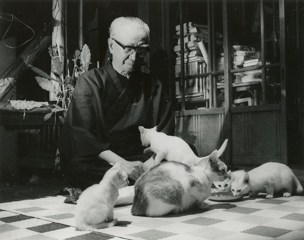 大佛次郎さんと猫(大佛次郎記念館所蔵)