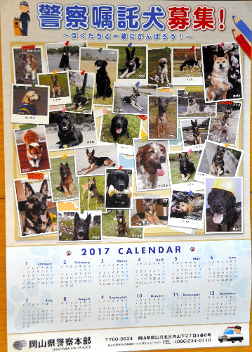 愛らしい警察嘱託犬の写真が並ぶ2017年用のカレンダー