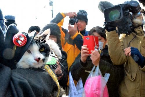 集まったファンや報道陣に囲まれる「よんたま」(左)=和歌山県紀の川市貴志川町