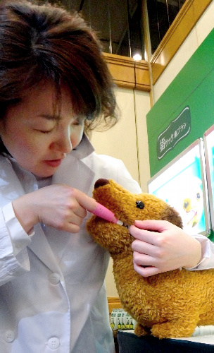 犬のぬいぐるみを使ってペット用の新しい歯ブラシの使い方を説明するライオン商事の担当者=東京都墨田区