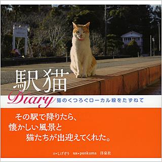 洋泉社 1,300円+税