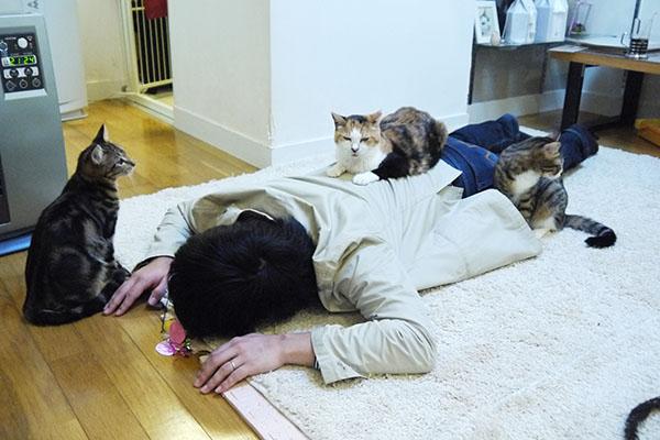 圭太君、不二子ちゃん、菊子ちゃんに囲まれ悶絶中のお客様