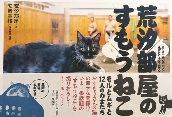 平凡社 1,300円+税