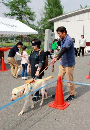 昨年4月の「盲導犬ふれあいデー」。盲導犬について知ってもらおうと啓発活動に力を入れる=東日本盲導犬協会提供