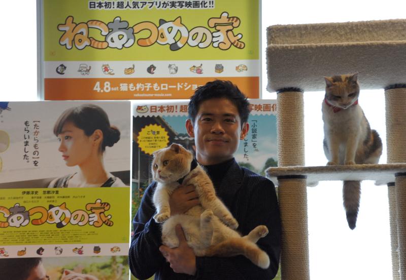 主演の伊藤淳史さんに抱かれるシナモン。キャットタワーにはドロップ。