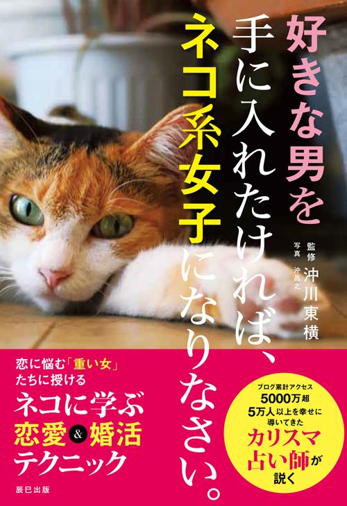 辰巳出版 1300円+税