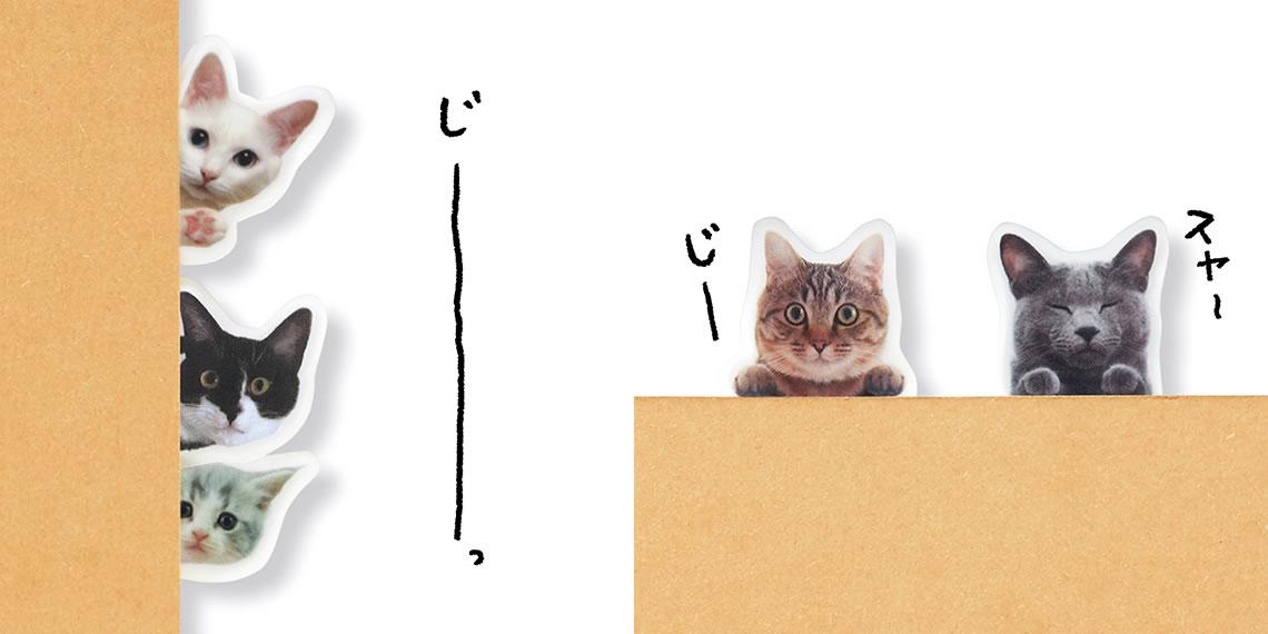 本やノートの端から、 猫がこちらをのぞき見。 猫と目があって思わずニッコリできそう。