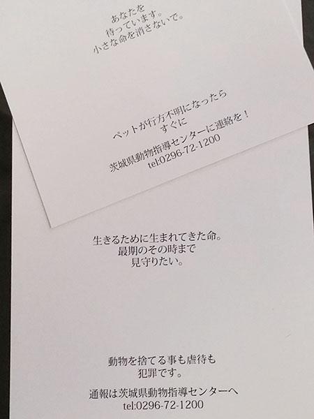 飯塚さん作成のポストカード裏面には茨城県動物指導センターへの通報番号が。