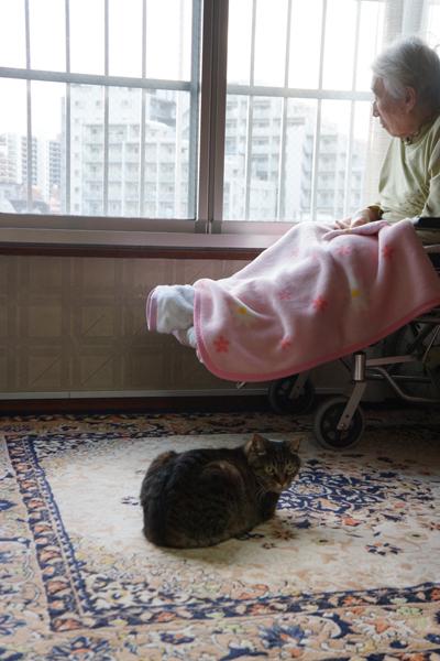 車いすのお母さんに寄り添うニャン