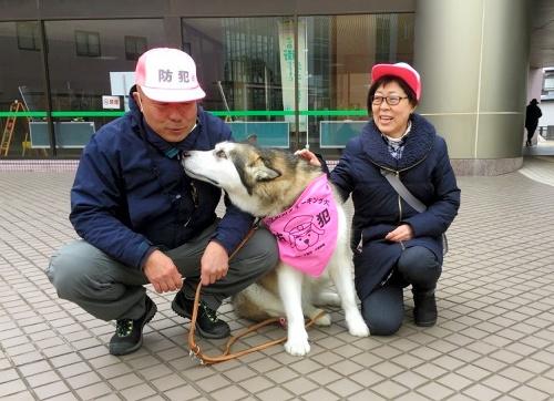 バンダナを首に巻いた犬=千葉市花見川区提供
