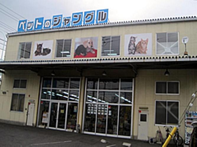 ペットショップ時代の店の外観
