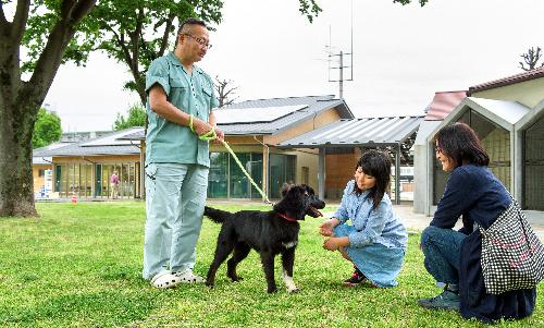 京都動物愛護センターで行われた犬の譲渡会に訪れた人たち=京都市南区