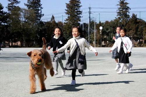立教女学院小の初代学校犬バディと子どもたち=立教女学院小提供