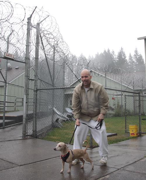 480名の男性受刑者を収容するラーチ・コレクションズ・センターには、保護猫と保護犬両方のプログラムがある。