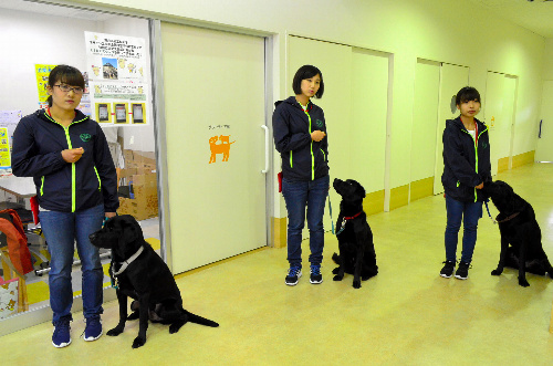 訓練士を目指して研修に取り組む(左から)田辺さん、香村さん、丸岡さん=愛知県長久手市