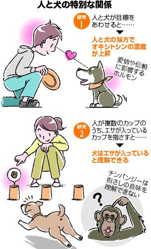 人と犬の特別な関係