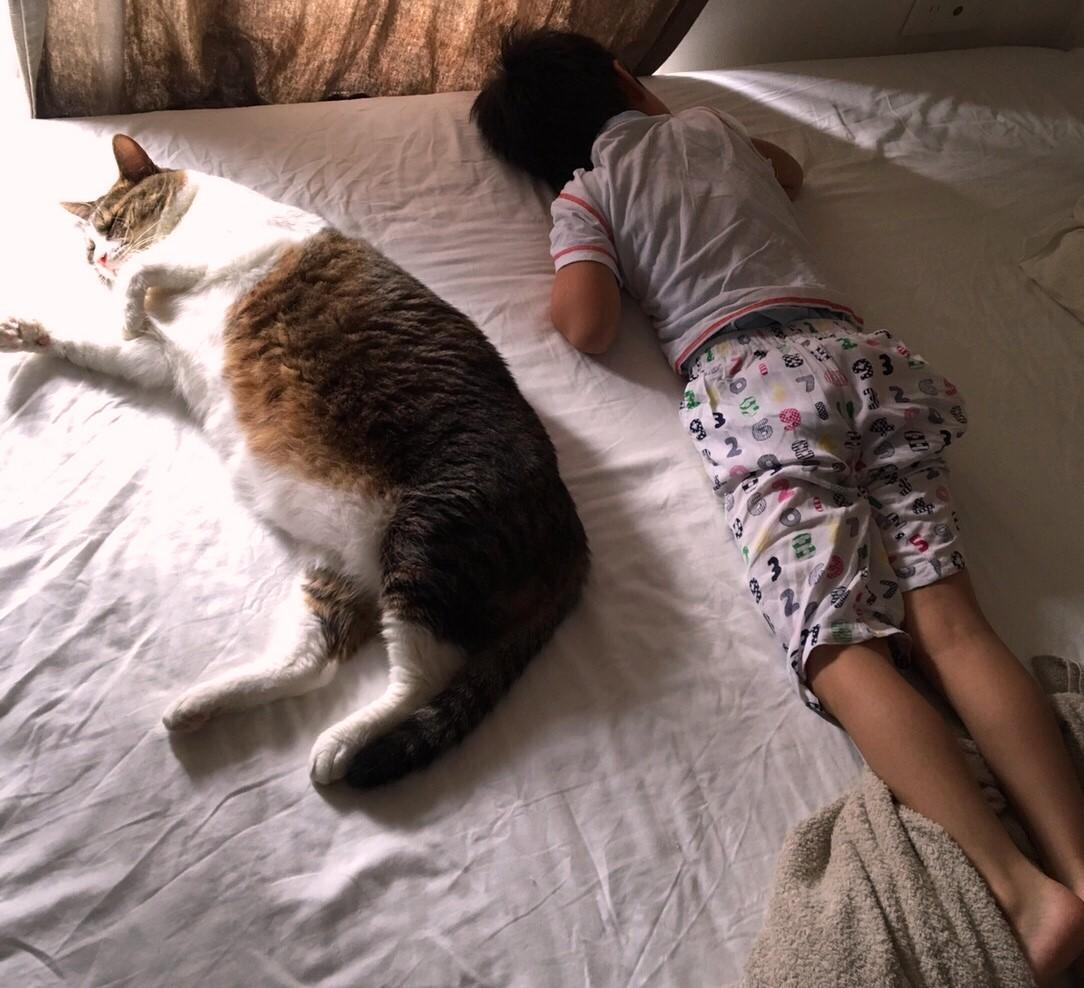 寝る子は育つ・・
