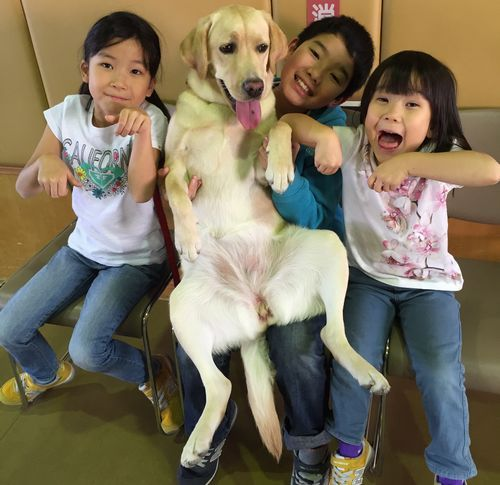 高井家の子供たち(梨花子ちゃん、龍大君、恵ちゃん)と仲良しになったサンディ