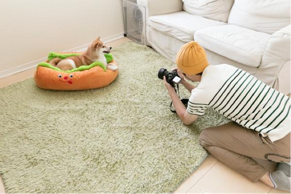 """「カメラ=おやつ直前の楽しい時間だから、今すごくウキウキしていると思いますよ。心の中はきっと""""おやつの時間キター!""""という感じ」と恵如さんが解説。人気の「ホットドッグ写真」もこのリビングで撮影された"""