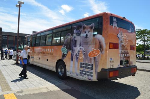 秋田犬のラッピングバス=大館市