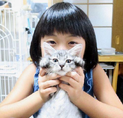 子猫の「小源太」を抱く渚美ちゃん