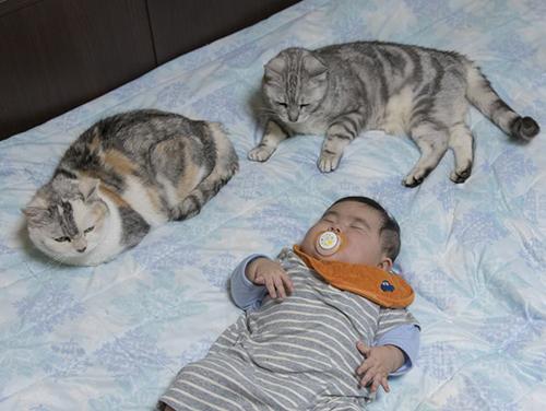 花子、リク、岩田さんの赤ちゃん