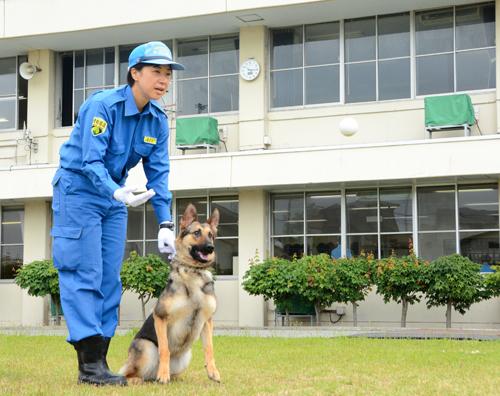 佐藤仁美さんとマリー号。マリー号はボール遊びで体を動かすのが大好きだ=秋田市新屋勝平台