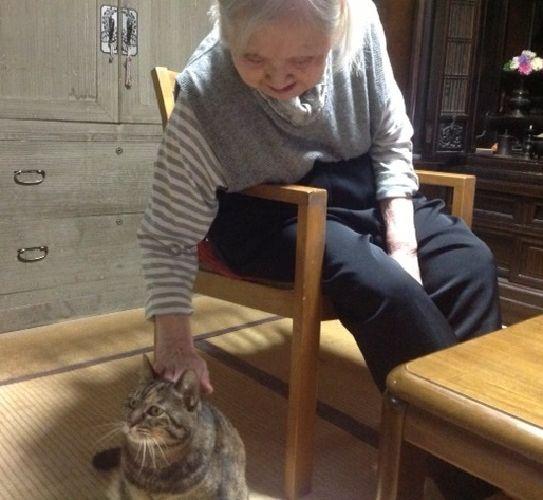 お母さんは、家に来たばかりのミーコをすぐに撫で、ミーコも甘えた(写真は2013年)