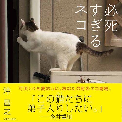 辰巳出版(タツミムック)本体価格1200円