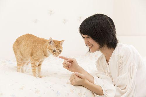 春ちゃんをあやす飼い主の理恵さん   五十嵐健太撮影