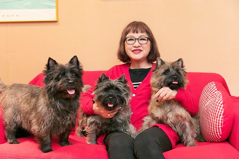 左からロビン、ロージー、ジェイソン。仕事場のソファは3匹のお気に入りスポットで「だいたい誰かがペタッと座って占領していますね」と上田さん