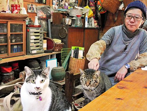 藤田裕子さんと猫たち