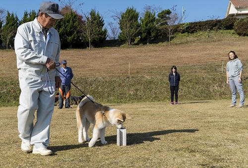 地方の方も参加した里守り犬のトレーニング会