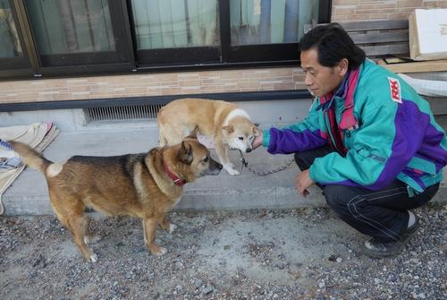 被災者から預かり中の犬をあやす赤間さん