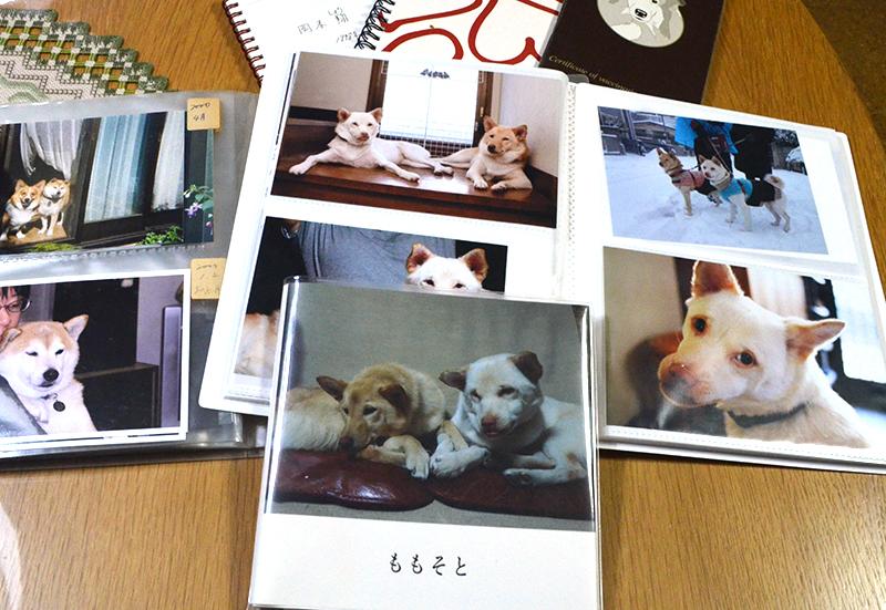 順子さんが作ったフォトブック「ももそと」やこれまでの写真アルバム
