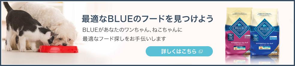 最適なBLUEのフードを見つけよう BLUEがあなたのワンちゃん、ねこちゃんに最適なフード探しをお手伝いします 詳しくはこちら