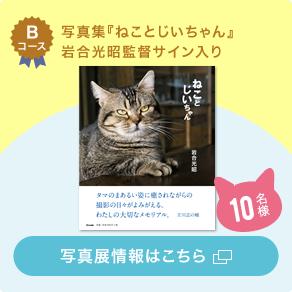 Bコース 写真集『ねことじいちゃん』岩合光昭監督サイン入り 写真展情報はこちら 10名様