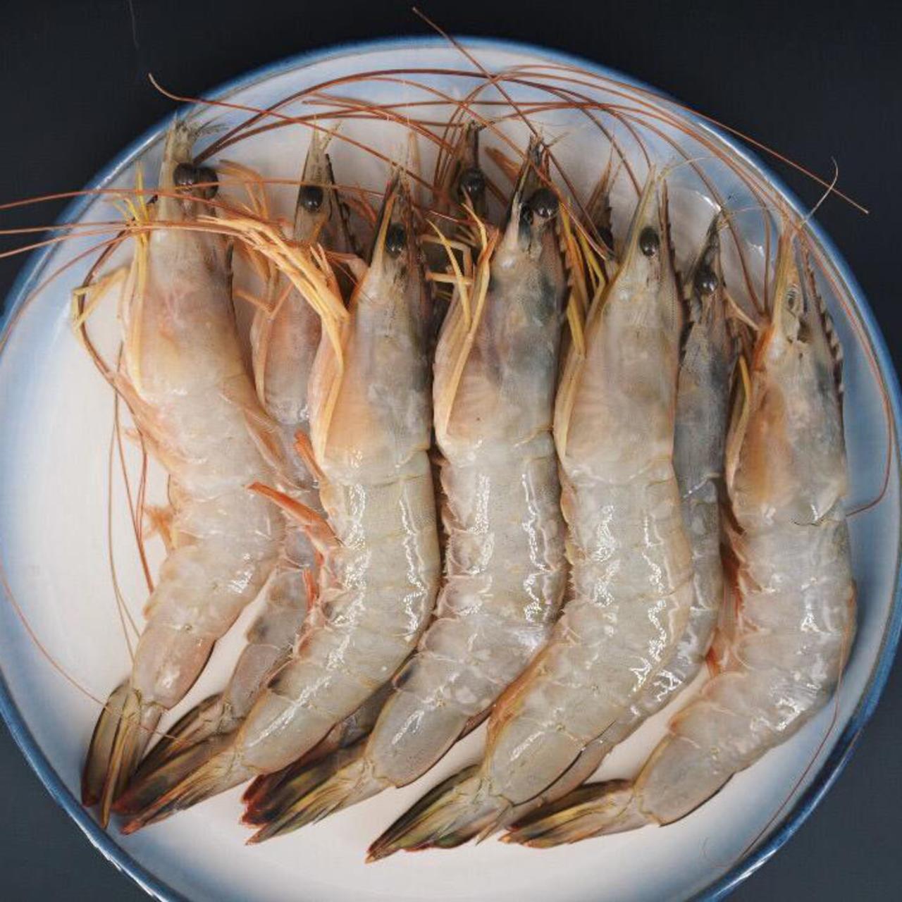 PRAWN SEA AA 明虾