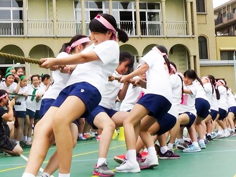 はちまきやゼッケンなども生徒たちが工夫を凝らして制作する、白百合学園の「球技スポーツ大会」のようす