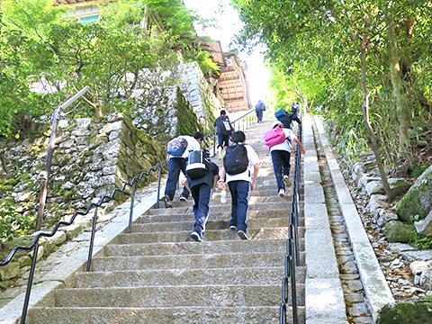 ゴール近くの急階段が辛い