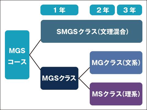 MGSコースの概要