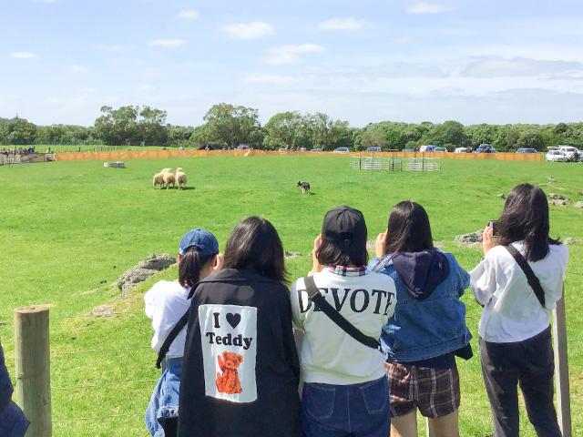 中3 GL海外研修 ニュージーランド