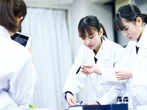 理科の実験に取り組む桜丘生