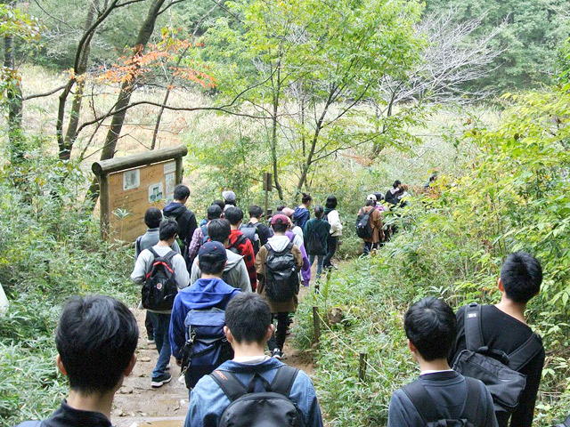 エコツアー 学校近くにある天覧山に自然観察に行きました
